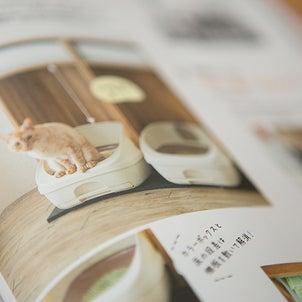 【雑誌掲載】ねこのきもち7月号「心地いい猫トイレ」の画像
