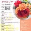 演奏会の司会で出演します~名古屋二期会 サマーフェスティバルガラコンサートの画像