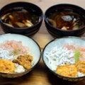 自家採捕アカウニとムラサキウニの自家製塩ウニ丼・しらすと地エビ添え、キビナゴとアオサの味噌汁。
