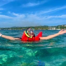 画像 ホンジュラスのロアタンで亀と一緒に泳ぐ の記事より 5つ目