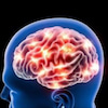 【うつ経験者が解説】ストレスがスーッと消える「オキシトシンの増やし方」の画像