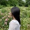 ✽㊗️フォロワー様1000人ありがとうございます!!!桜羽ひかりさん♡✽の画像