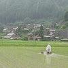 泥んこ除草と素晴らしい動画の画像