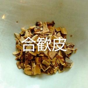 漢方茶【使用できる生薬】【使用できない生薬】の画像