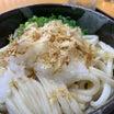 この辛味がクセになる♪                           高松市「藤村製麺所」