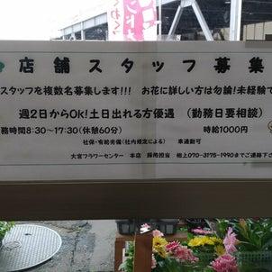 さいたま市/川越市の花屋の求人(アルバイト募集)@大宮フラワーセンター本店&川越店の画像