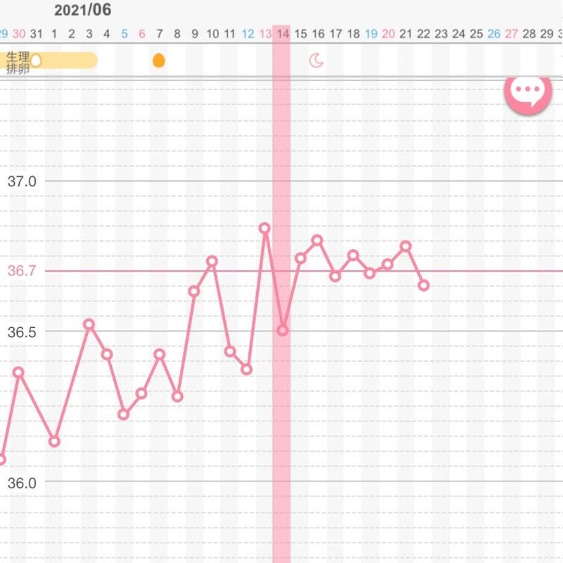 高温期15日目 妊娠の可能性