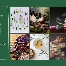 画像 メルマガ【植物の魔力を学ぶ!アロマとハーブの教科書】配信開始のお知らせ の記事より