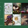 メルマガ【植物の魔力を学ぶ!アロマとハーブの教科書】配信開始のお知らせの画像