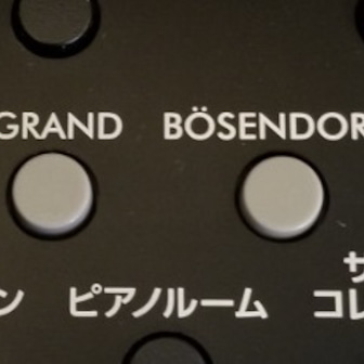 【つぶやき】うちのピアノをよみぃくんが演奏してる?