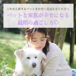 画像 7/24満月メッセージ♡ の記事より 13つ目