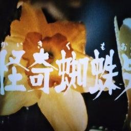 画像 本日、日清カップヌードル発売50周年\(^o^)/ の記事より 6つ目