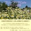 死別・離別した方向けわかちあいの会/春日井市7月11日(日)グリーフケアCafe サロン澄音の画像