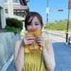 日本三景松島へ!の画像