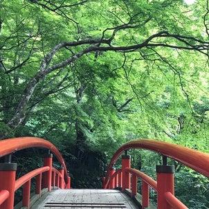 伊香保 河鹿橋 新緑✨の画像