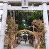 *今日は、ご近所の亀有香取神社へ*の画像