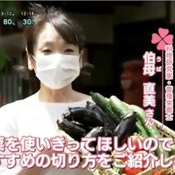 """画像 【TV 出演】NHKあさイチ クイズとくもり「におわせない!出さない!""""生ごみ""""対策」 の記事より 1つ目"""