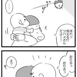 ツバメの巣の画像