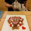 狆「三葉ちゃん」のBirthdayケーキの画像