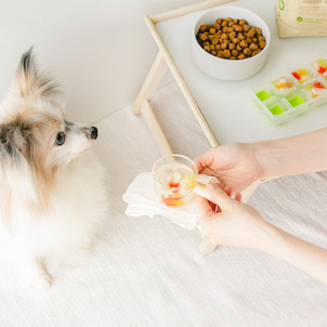 七夕にも☆ささみと夏野菜の犬用スープレシピ(手作り犬おやつ&ドッグフードトッピング)の画像