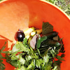 夏野菜続々と収穫の画像