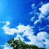 繋がっている 青い空に抱かれて トモエスクールの画像