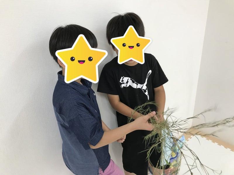 o4032302414969017082 - 7月9日(金)☆toiro仲町台☆
