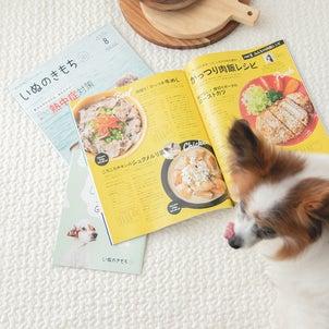 いぬのきもち8月号:鶏、豚、牛の犬おやつレシピ掲載中☆の画像