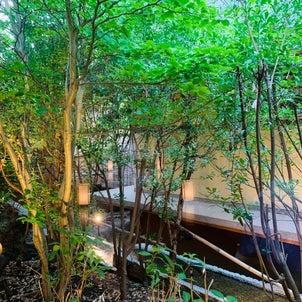 源泉かけ流し温泉と鮑の踊り焼@ホテル紫苑の画像