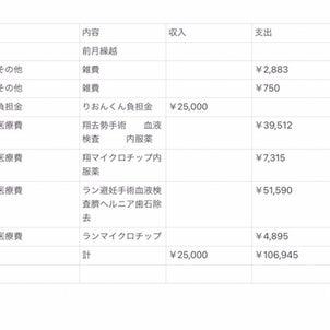 5月会計報告の画像