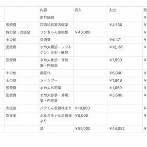 6月会計報告の画像