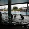 野沢温泉スパリーナの夏季営業が始まりました!の画像