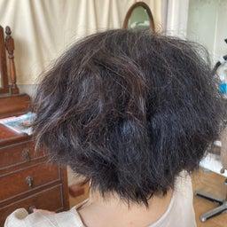 画像 硬毛の癖毛の方 の記事より 1つ目