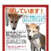 """""""""""7/13  ノア""""""""の画像"""