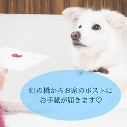 画像 7/24満月メッセージ♡ の記事より 6つ目