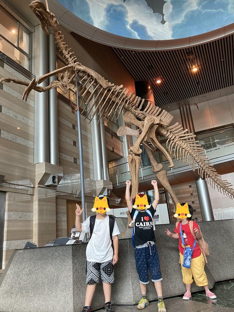 o1000133314971915188 - 7/10(土) toiro平塚 生命の星・地球博物館