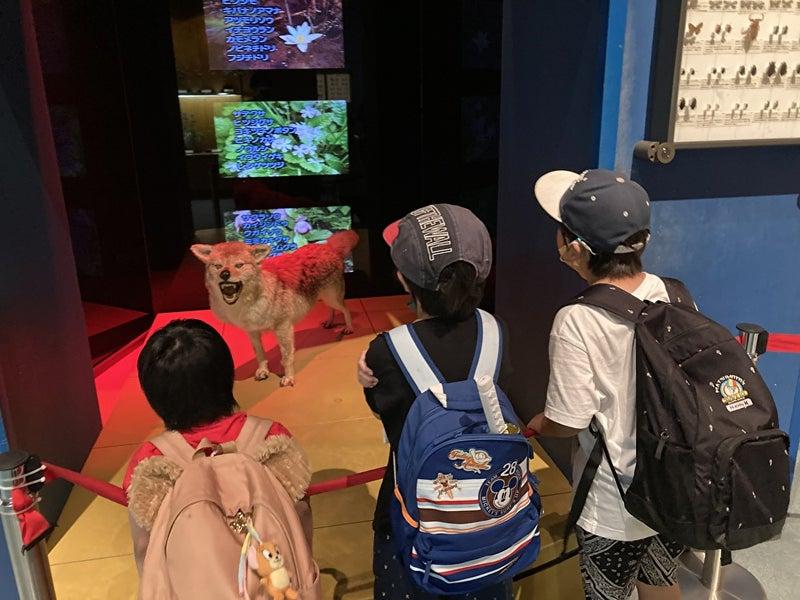 o1000075014971915348 - 7/10(土) toiro平塚 生命の星・地球博物館