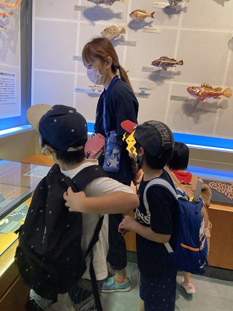 o1000133314971915395 - 7/10(土) toiro平塚 生命の星・地球博物館