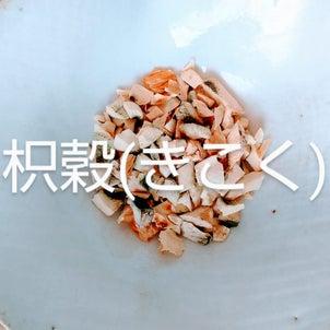 たゆたう漢方茶【茶材のお話】の画像