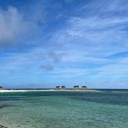 画像 【代理祈願】沖縄フクギ並木と選ばれた人のみ行けるパワースポット の記事より 4つ目