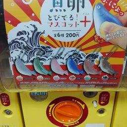 画像 7/15 ジョープラ店 今日の新商品情報~♪ の記事より 7つ目