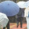 雨雲レーダーと仕合せる:№2341の画像