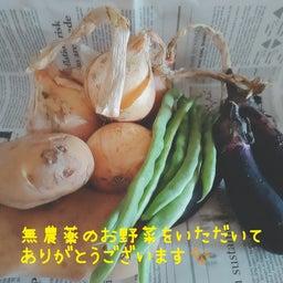 画像 発表会プログラム原稿が出来ています!【神戸市北区ピアノ教室】 の記事より 2つ目