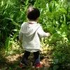 【ラジオ番組オンエア】ハヤシは、小さいおじさんに会ったのか?なお話/みんなが持ってる霊的な能力?の画像