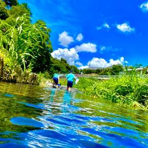 【夏おすすめ】水中カメラになるiPhoneの画像