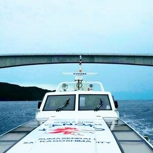 ワイルドだぜー断崖クルーズかのこ号@上甑島の画像