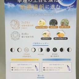 画像 水瓶座満月&獅子座新月バイブレーションシフター の記事より 2つ目