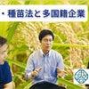 種子法・種苗法と多国籍企業の画像