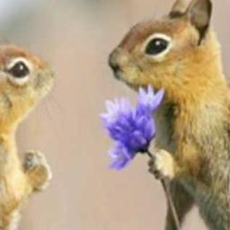 """画像 素敵な恋愛をしましょう、""""結婚""""はそれから二人で決めれば良いのです! の記事より 1つ目"""
