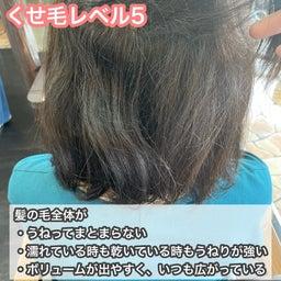 画像 うねる、広がる、ハネるくせ毛から解放される方法 の記事より 7つ目